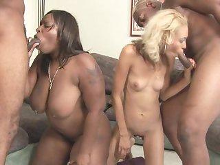 Two babes are sucking big hard dicks